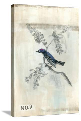 After Flight IV-Naomi McCavitt-Stretched Canvas Print