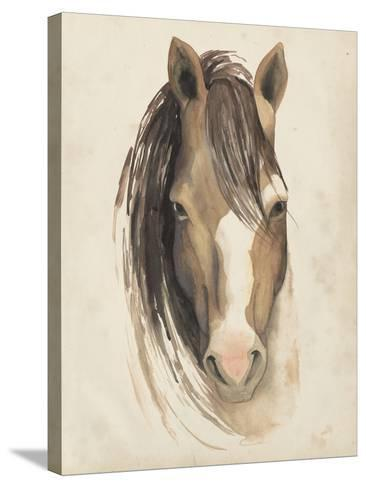 Watercolor Animal Study V-Grace Popp-Stretched Canvas Print