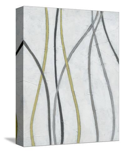 Bob & Weave II-June Erica Vess-Stretched Canvas Print