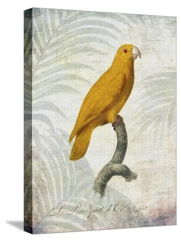 Parrot Jungle V-John Butler-Stretched Canvas Print