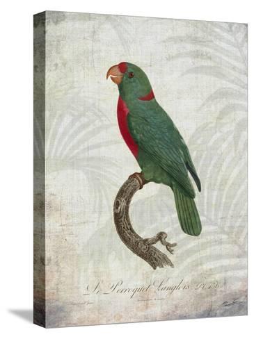 Parrot Jungle VI-John Butler-Stretched Canvas Print