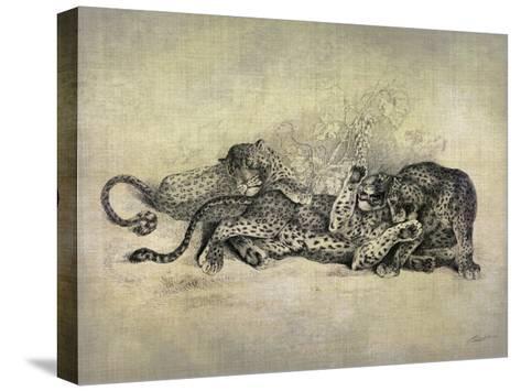 Big Cats I-John Butler-Stretched Canvas Print