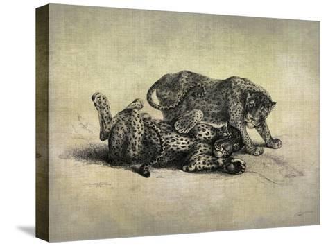 Big Cats II-John Butler-Stretched Canvas Print