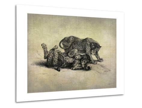 Big Cats II-John Butler-Metal Print
