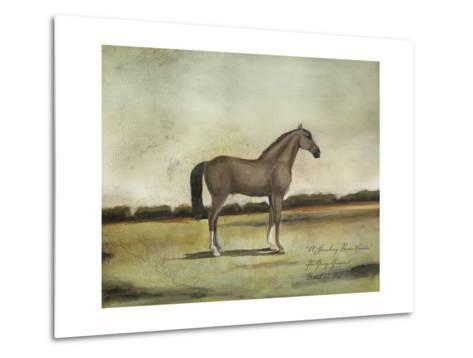 A Strawberry Roan Hunter-Naomi McCavitt-Metal Print