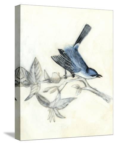 Rustic Aviary III-Naomi McCavitt-Stretched Canvas Print