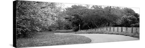 Country Road-Kelly Poynter-Stretched Canvas Print