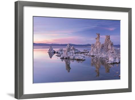 Salt Pillar Formations at Sunset, South Tufa, Mono Lake, California, USA-Adam Burton-Framed Art Print