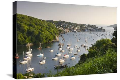 Pont Pill, Polruan and the Fowey Estuary from Hall Walk Near Bodinnick, Cornwall, England. Summer-Adam Burton-Stretched Canvas Print