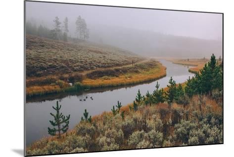 Misty Stream Through Yellowstone, Wyoming--Mounted Photographic Print