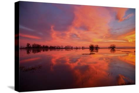 Fiery Marsh Sunset and Reflection--Stretched Canvas Print