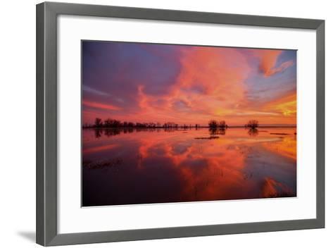 Fiery Marsh Sunset and Reflection--Framed Art Print