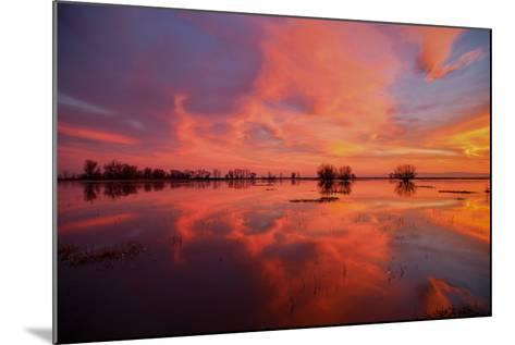 Fiery Marsh Sunset and Reflection--Mounted Photographic Print