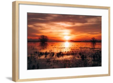 Winter Sunset at Merced Wildlife Refuge, California--Framed Art Print