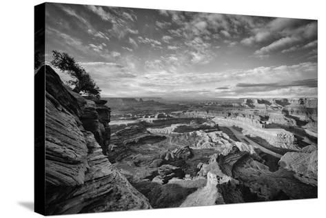 Classic Dead Horse Point in Black and White, Moab Utah--Stretched Canvas Print