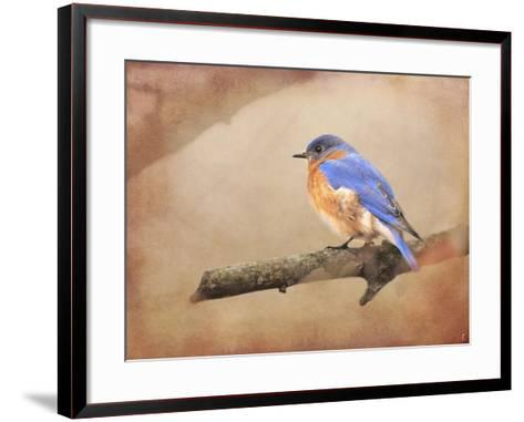 Braving Autumn Bluebird-Jai Johnson-Framed Art Print