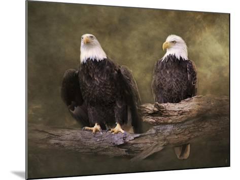 Mates Bald Eagle Pair-Jai Johnson-Mounted Giclee Print
