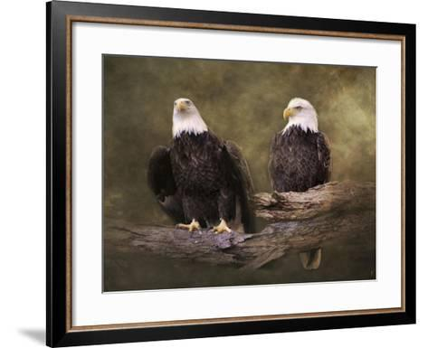 Mates Bald Eagle Pair-Jai Johnson-Framed Art Print