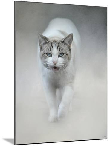 Out of the Mist-Jai Johnson-Mounted Giclee Print