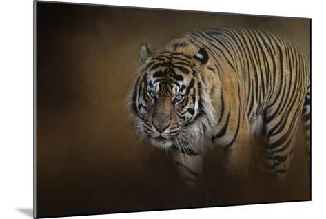 Bengal Stare-Jai Johnson-Mounted Giclee Print