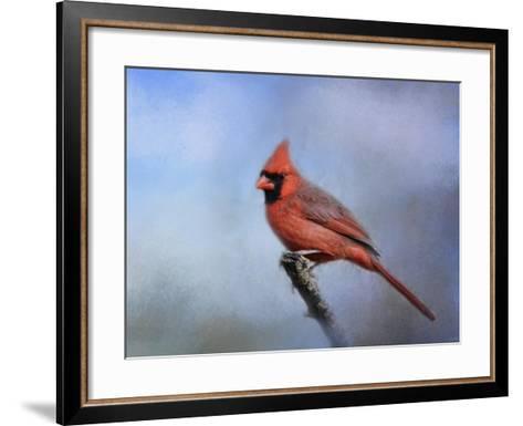 Cardinal at First Frost-Jai Johnson-Framed Art Print