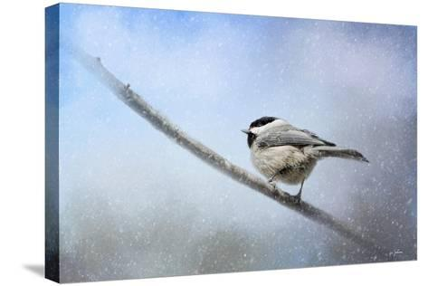 Chickadee in the Snow-Jai Johnson-Stretched Canvas Print
