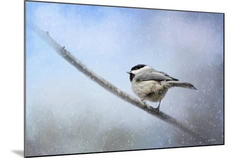 Chickadee in the Snow-Jai Johnson-Mounted Giclee Print