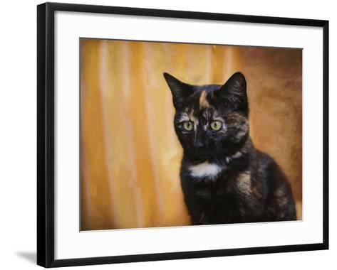 Jeweled Eyes Tortoiseshell Kitten-Jai Johnson-Framed Art Print