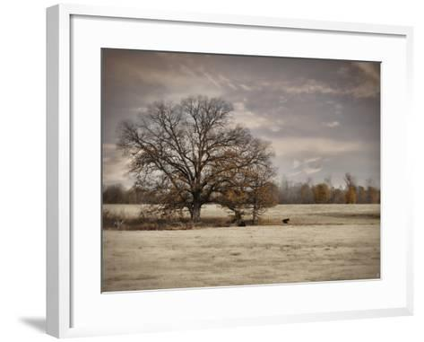 Lazy Autumn Day-Jai Johnson-Framed Art Print