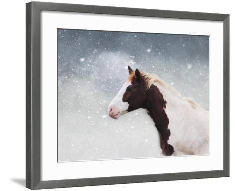 Paint Horse in the Snow-Jai Johnson-Framed Art Print