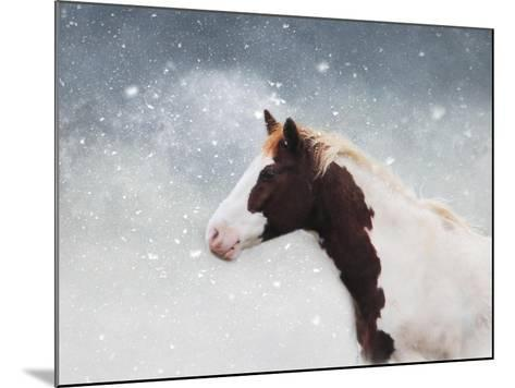 Paint Horse in the Snow-Jai Johnson-Mounted Giclee Print
