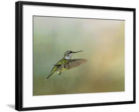 Peaceful Day with a Hummingbird-Jai Johnson-Framed Art Print