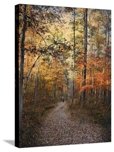 Journey Within-Jai Johnson-Stretched Canvas Print