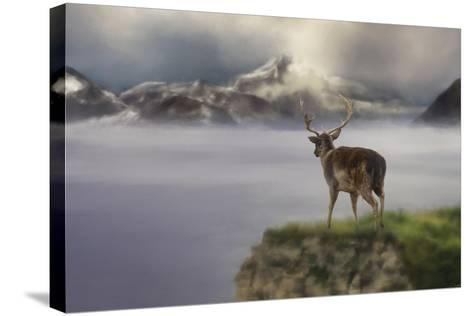 Mountains Out of Reach-Jai Johnson-Stretched Canvas Print