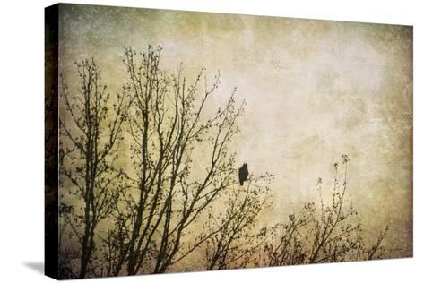 Greeting the Sun-Jai Johnson-Stretched Canvas Print