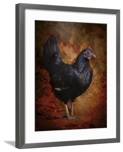 Black Bantam Chicken-Jai Johnson-Framed Art Print
