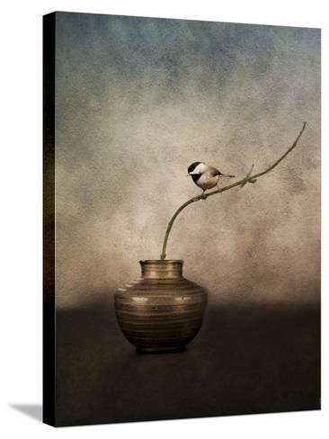 Black Capped Chickadee on a Vase-Jai Johnson-Stretched Canvas Print