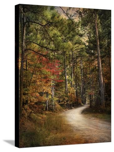 Autumn Forest 2-Jai Johnson-Stretched Canvas Print