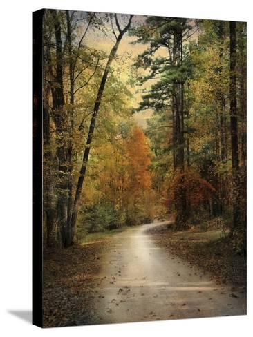 Autumn Forest 4-Jai Johnson-Stretched Canvas Print