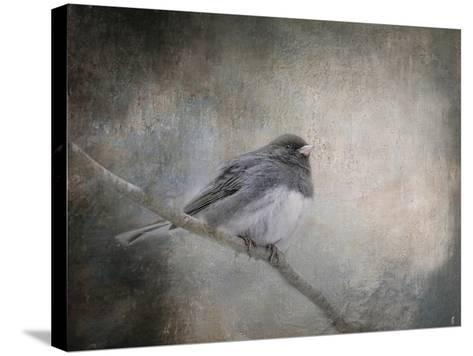 By Winter's Light-Jai Johnson-Stretched Canvas Print