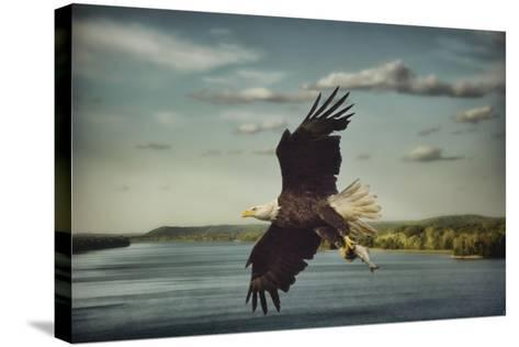 Catch of the Day-Jai Johnson-Stretched Canvas Print