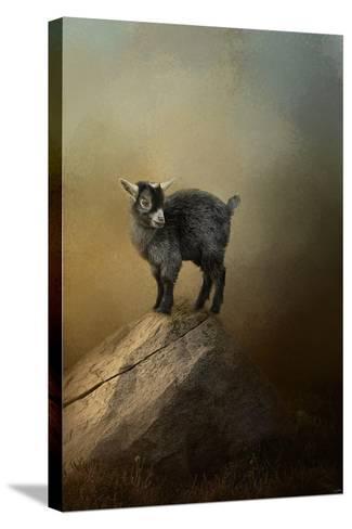 Little Rock Climber-Jai Johnson-Stretched Canvas Print