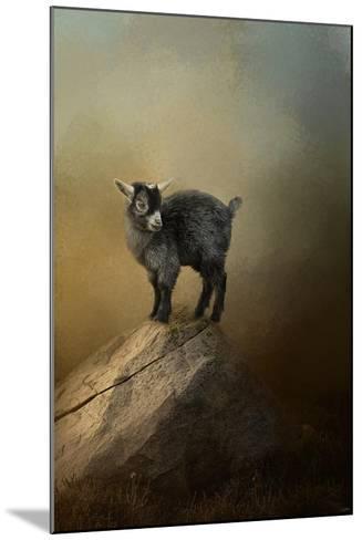 Little Rock Climber-Jai Johnson-Mounted Giclee Print