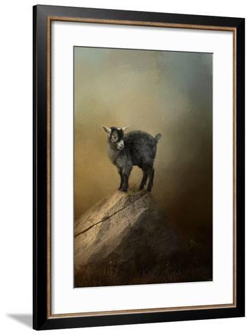 Little Rock Climber-Jai Johnson-Framed Art Print