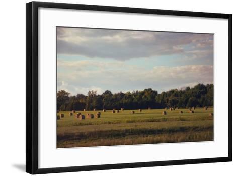 Facing the Sun-Jai Johnson-Framed Art Print