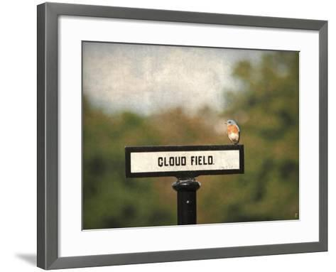 Bluebird at Cloud Field-Jai Johnson-Framed Art Print