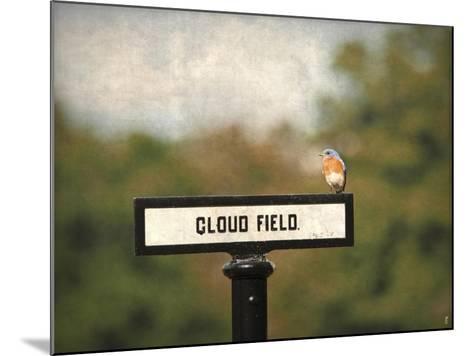 Bluebird at Cloud Field-Jai Johnson-Mounted Giclee Print