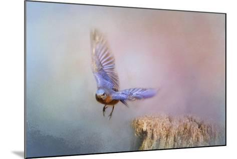 Bluebird Escape-Jai Johnson-Mounted Giclee Print