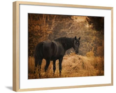 Horse and the Haystack-Jai Johnson-Framed Art Print