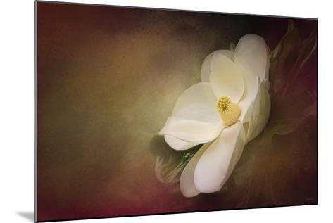 Magnolia in Bloom 1-Jai Johnson-Mounted Giclee Print